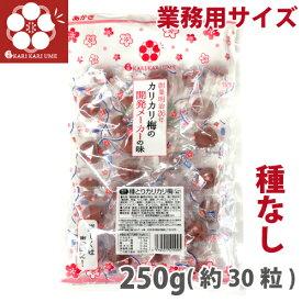 赤城フーズ 種とりカリカリ梅 1袋 250g(約30粒) (大粒) 種取物語 業務用サイズ 熱中症対策 種無しかりかり梅