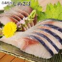 【しめ鯖】 【送料無料】 【タケワ】 青森県産  しめさば 12枚セット −旬の八戸前沖銀鯖使用しめ鯖(しめさば)…