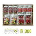 【送料無料】フレッシュロック ギフトセット 5000スプーンプレゼント!パッキン色選択出来ます! 300×3個・500×3個・1.1L×2個・1.4L×2個のセットギフト 白パッキン 緑パッキン 売筋セット