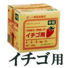 ハイポネックス 業務用 プロミック錠剤 10kgイチゴ用 8-8-8 中粒・小粒 どちらか選択