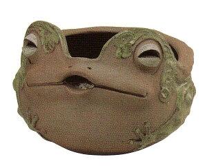 蛙 鉢カバー(つやなし) 7号 (16C04)