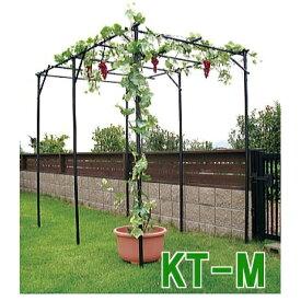 第一ビニール DAIM フルーツ栽培キット くだもの棚セット KT-M [キウイ棚 ぶどう棚 葡萄棚 園芸棚]