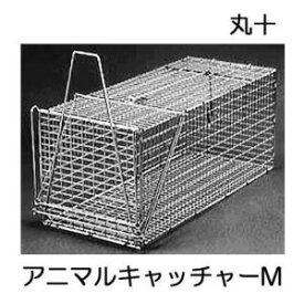 丸十金網 イタチ 猫 ジャンボ捕獲器 アニマルキャッチャー 餌吊式 M型(RB-2相当品) 手袋2双付き
