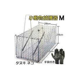 丸十金網 イタチ 猫 小動物捕獲器(作業手袋付き)アニマルキャッチャー 餌吊式 M型 ジャンボ捕獲器 日本製