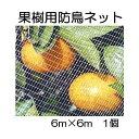 キンボシ 果樹すっぽり防鳥ネット 6×6M 7679