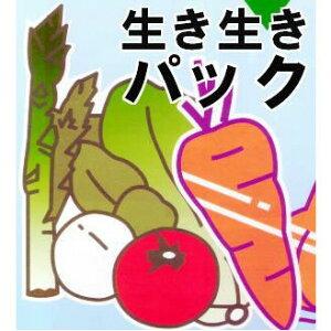 OPP防曇野菜印刷袋 生き生きパック#25にんじん、メークインなど・・・6000枚[野菜袋 瀧商店]
