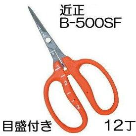 2箱(12丁)特価 近正 ぶどう鋏 B-500SF ステンレスフッソ加工 チカマサ ぶどう手入れ鋏 目盛付き