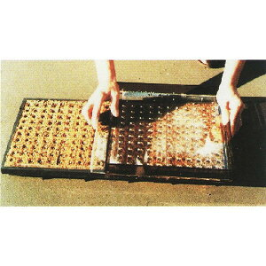 ポットシーダー CP250H 裸種子(ネギ)用 播種器[ペーパーポット チェーンポット] ニッテン 日本甜菜製糖