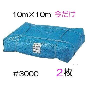 限定特価 2枚 ブルーシート 厚手 #3000 10M×10M【smtb-ms】