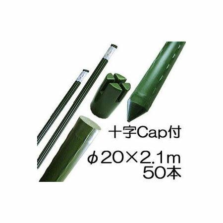 園芸支柱 イボ付 鋼管竹 十字キャップ付 φ20mm×2.1m 50本単位 シンセイ