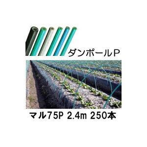 ダンポールP マル75 ×2.4m 緑 トンネル幅120cm 徳用 250本 [トンネル支柱 アーチ支柱] 宇部エクシモ