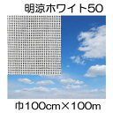 JX日石ワリフ 明涼ホワイト50 100cm×長さ100m 遮光率50% 不織布