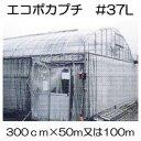 ハウス保温内張り材 エコポカプチ #37L 幅300cm 長さ50mを2巻または100mを1巻選択