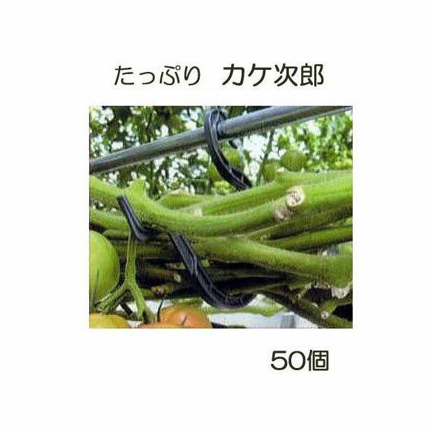 トマト誘引資材 たっぷり カケ次郎 50個入 KJR-50[誘引具 カンタン 瀧商店]