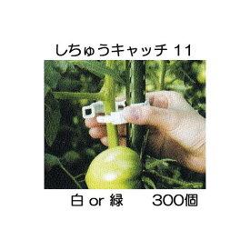 誘引資材 しちゅうキャッチ 11(300個入) 白or緑 色選択 支柱径11mm用 シーム S11W-300 S11G-300