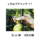 Imgrc0101956873
