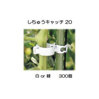 引誘材料shichu捕捉20(300個裝)白or綠色選擇支柱徑20mm供使用