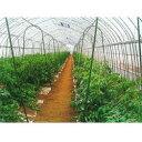セキスイ菜園アーチ支柱 口径16間口700高さ2040mm 10本