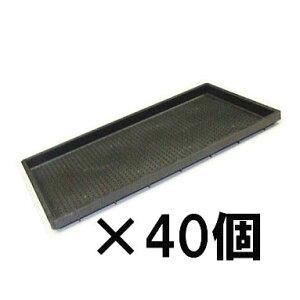日本製 中苗用育苗箱 水稲用 内寸580×280×28 安全興業40個単位 法人/個人選択