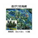 果樹用 直がけ防鳥網 1000d 9m×9m 徳用10個セット 果樹すっぽり防鳥ネット