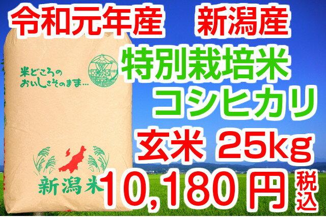 30年産 送料無料!(地域限定)新潟産特別栽培米コシヒカリ 玄米25kg(検査袋1袋)お米マイスター特選 贈り物・ご家庭用においしいコシヒカリをどうぞ!安心安全の減農薬米です!