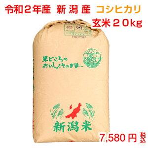 ◆新米◆発送9/15〜 令和2年産 新潟産コシヒカリ 玄米20kg(10kg×2袋)お米マイスター特選 贈り物・ご家庭用においしいコシヒカリをどうぞ!