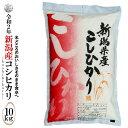 ◆産地直送◆ 令和2年産 新潟産コシヒカリ 白米10kg(5kg×2袋)お米マイスター特選 贈り物・ご家庭用においしいコシ…