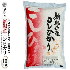 ◆産地直送◆ 令和2年産 新潟産コシヒカリ 白米10kg(5kg×2袋)お米マイスター特選 贈り物・ご家庭用においしいコシヒカリをどうぞ!