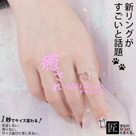 指輪 リング ねこ 猫 グッズ ネコ 癒し 女性 誕生日 人気 かわいい オシャレ 好きな人 軽い 動物 シルバー 薄い シンプル 日本製 人気 ブランド フリー 親置き 台座 パーツ