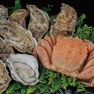 【蟹と牡蠣の美味しいセット!】ボイル毛ガニ500g×1尾&仙鳳趾産【活】牡蠣(大)10個
