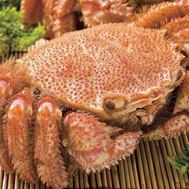 [早割]ボイル毛蟹(特大)1尾(600〜700g)
