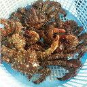 【訳あり】折れ品、若、若上混み、身入60〜80%、味は正規品と変わりません花咲蟹 3〜4尾・合計1kg前後