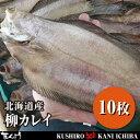 北海道産 柳カレイ・10枚