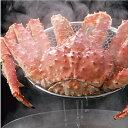 ボイル本たらば蟹〈姿〉2.5〜2.6kg(活の状態で3.3〜3.5kg)1尾【楽ギフ_のし】【冷凍カニ】【お買い得】【ギフト】