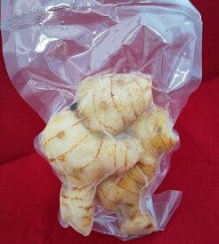 【冷凍 ガランガル 200g】galangal カー lengkuas 冷凍野菜 ベトナム料理 タイ料理 ラオス料理 トムヤムクン トムカーガイ フエ料理 ソト インドネシア料理 生姜 ショウガのような