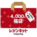 レジンキット tama工房の4000円happybag レジンセット レジン液 レジン枠 レジン封入材 アクセサリーパーツなどの福袋…