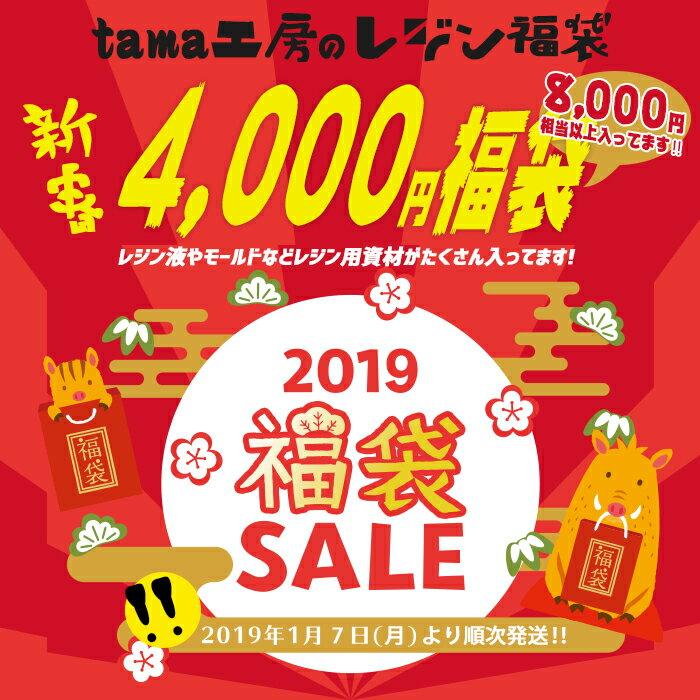 レジン 福袋 tama工房の4000円福袋 レジンセット レジン液 レジン枠 レジン封入材 レジン着色など 内容はロットにより異なります。
