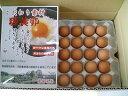 輝黄卵 赤卵LLサイズ 10kg【102個〜112個+破損保障30個】 鶏卵 国産 (約135個) たまご 一流シェフに選ばれて…