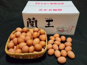 こだわりたまご蘭王 Lサイズ 10kg【103個〜116個+破損保障40個】 鮮やかな濃いオレンジ色の卵黄色 卵 たまご 新鮮