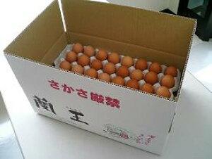 こだわりたまご蘭王 MSサイズ 5kg【67個〜75個+破損保障20個】 鮮やかな濃いオレンジ色の卵黄色 卵 たまご 新鮮
