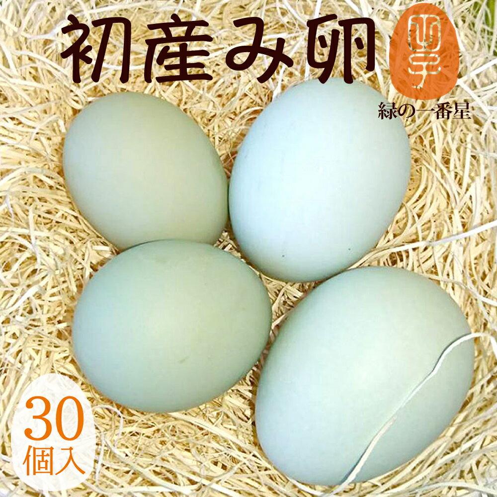 緑の一番星 期間限定の縁起物 初産み卵 30個(トレイ入 小さめサイズ) 雑誌掲載テレビで話題 緑の卵 高波動 ギフト 母の日 お中元 父の日 お年賀