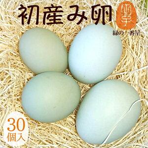 緑の一番星 期間限定の縁起物 初産み卵 30個(トレイ入 小さめサイズ) 雑誌掲載テレビで話題 緑の卵 高波動 ギフト 送料無料 卵かけご飯