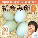 緑の一番星 期間限定の縁起物 初産み卵 30個(トレイ入 小さめサイズ) 雑誌掲載テレビで話題 緑の卵 高波動 ギフト お…