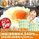 送料無料ポイント5倍!お得な定期購入 青森限定 希少な最高級卵 緑の一番星 60個 初回限定 送料無料4,340円!2回目以…
