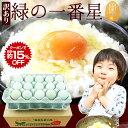 訳あり10%OFF+クーポンで5%OFF(3/21 20:00〜3/28 1:59迄) 卵 緑の一番星 生卵30個入(生卵25個+破損保証5個)(トレイ入) 雑誌掲載テレビ紹介で話題 ギフト 送料無料 緑の卵 アローカナ大黄卵鶏 高級栄養タマゴ 30%黄身 甘く濃厚 生臭さ無 オーラ最高値 高波動 卵かけご飯