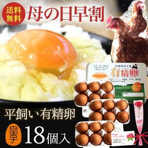 母の日 早割 10%OFF 卵 ギフト 有精卵 18個入り 平飼いでストレスなくのびのび育った純国産鶏産む健康タマゴ ダイエット 免疫力 生卵を飲む方もおすすめ 平飼い有精卵 卵かけご飯 お取り寄