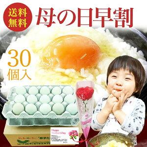 母の日 早割 10%OFF 緑の一番星 生卵30個入(生卵25個+破損保証5個)(トレイ入) ギフト 贈り物 テレビ紹介で話題 ギフト 包装,のし,カード無料!緑の卵 アローカナ大黄卵鶏が産む薄緑殻 高級栄養