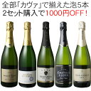 【送料無料】【2セットで1000円OFF】ワインセット カヴァ 5本 セット 辛口 シャンパン製法 瓶内二次発酵 スパークリン…