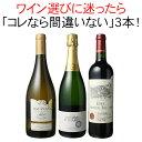 【送料無料】ワインセット 迷ったらこれ 御祝 誕生日 ギフト プレゼント 赤ワイン 白ワイン スパークリング ワイン 3…