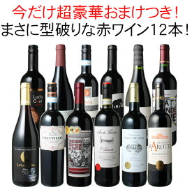 【送料無料】ワインセット 渾身 赤ワイン 12本 セット ボルドー フランス イタリア 南アフリカ スペイン ポルトガル 型破り赤 第28弾